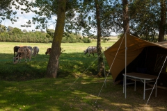 emplacement camping (5)