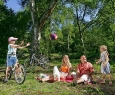 Bois du camping