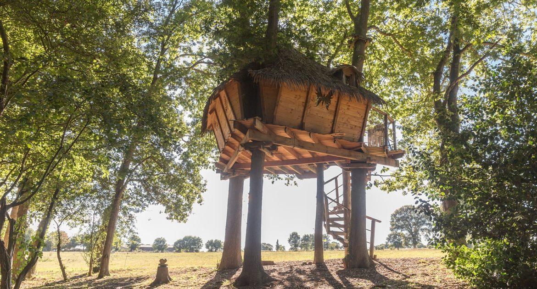 La cabane Butterfly, une nuit dans les arbres, petit-déjeuner livré au pied de l'arbre - week end atypique cabane dans les arbres