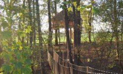La cabane Butterfly, une nuit dans les arbres, petit-déjeuner livré au pied de l'arbre