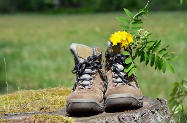 chaussures randonnée campagne