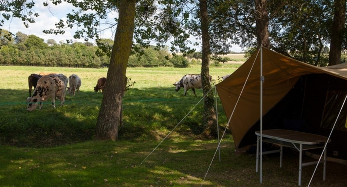 Emplacement Standard - emplacement-camping-5