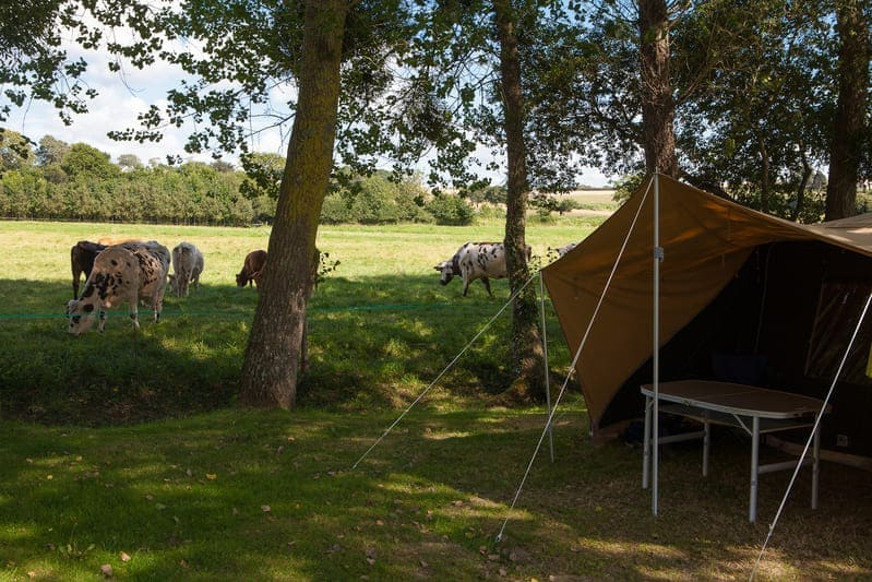 Emplacement-de-camping-standard-camping-5-etoiles-avec-piscine-couverte