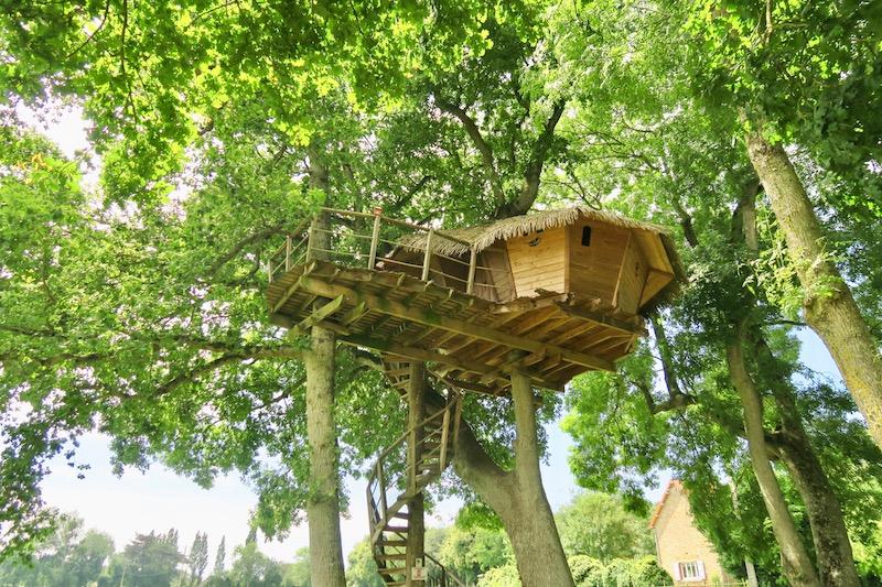 Cabane en bois perchée