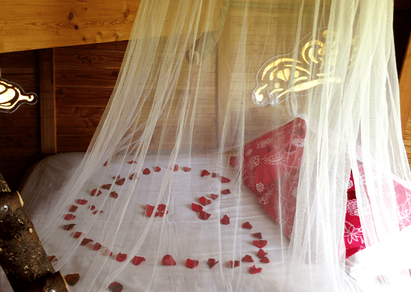 pétales de roses sur lit