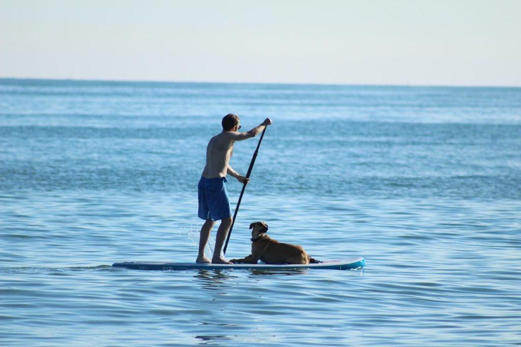 vacances chien normandie